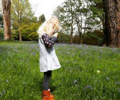 Top tips to help your children take photos