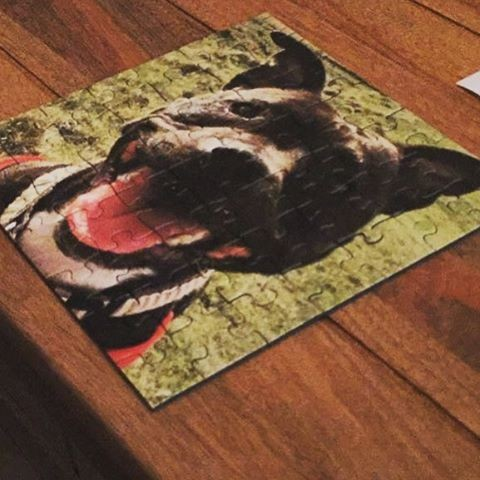 personalised jigsaw puzzle with a dog