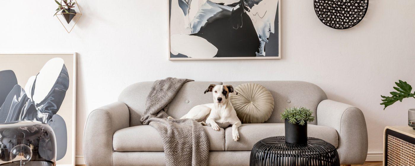 15 Living Room Decoration Ideas Home Decor Photobox